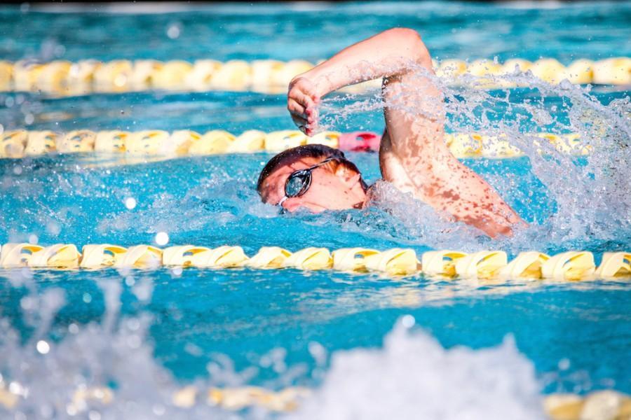 Triumph in the pool