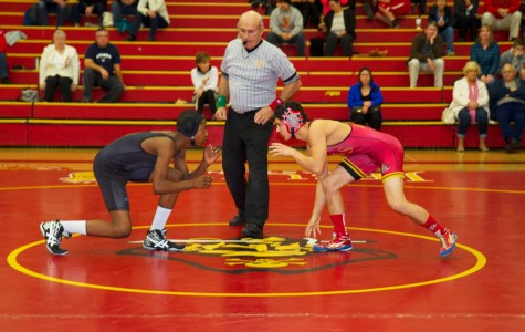 Wrestling to the road of success