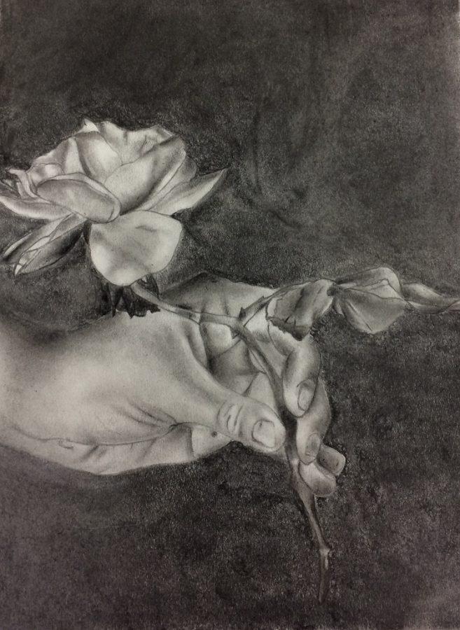 My Sister's Rose