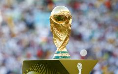 Importance of the world cup